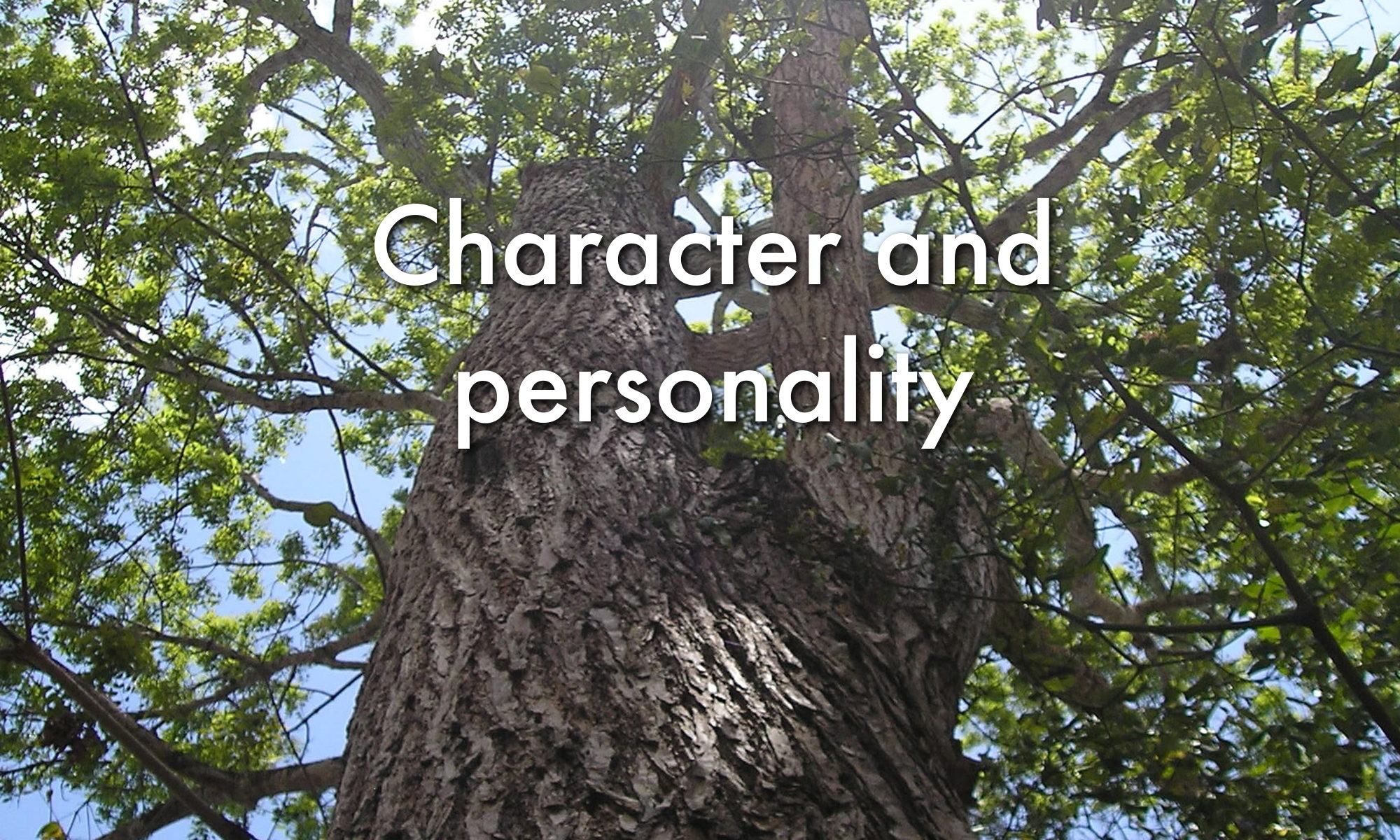 Character and personality